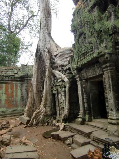 カンボジア3520.JPG