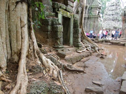 カンボジア3521.JPG
