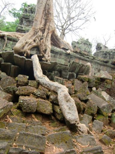 カンボジア3604.JPG