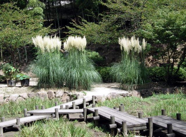 2010年8月31日長府庭園0048.JPG