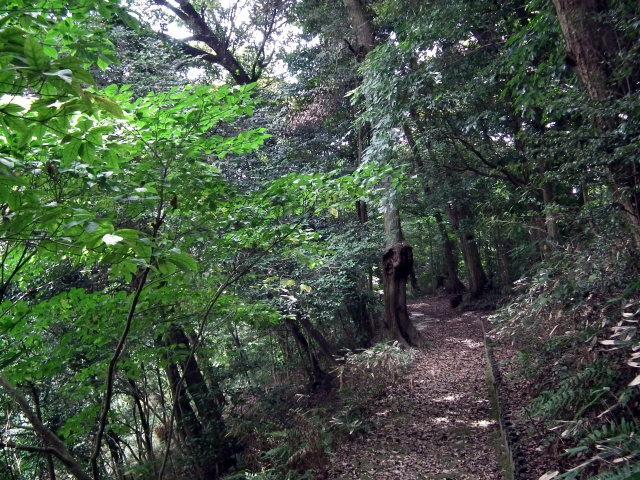 2010年8月31日長府庭園0051.JPG