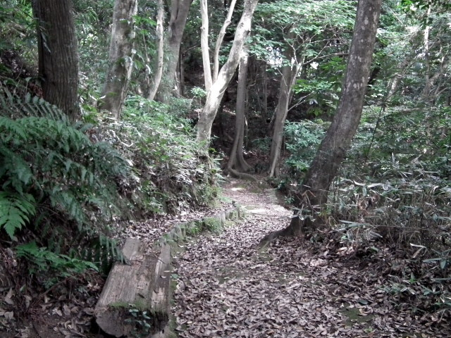 2010年8月31日長府庭園0053.JPG