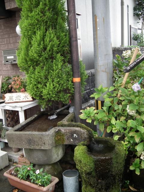 2010年9月3日蕎麦街道・阿蘇・・・0203.JPG