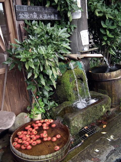 2010年9月3日蕎麦街道・阿蘇・・・0208.JPG