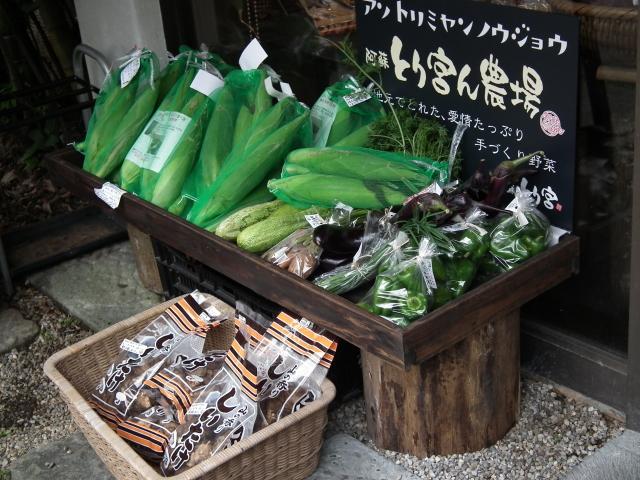 2010年9月3日蕎麦街道・阿蘇・・・0235.JPG