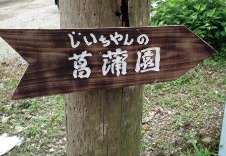 菖蒲園0057.JPG