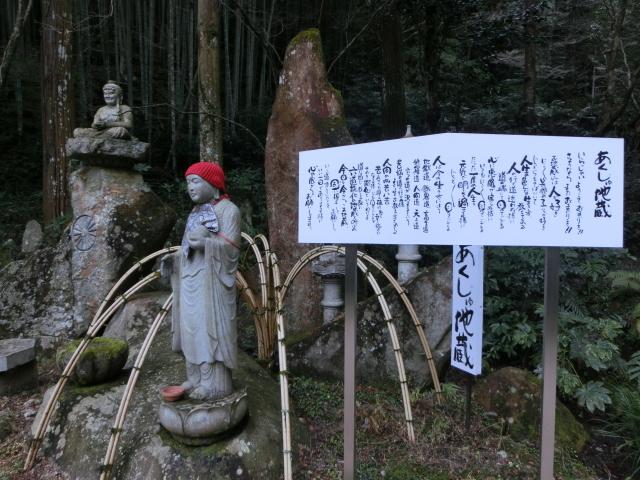 龍蔵寺・牡丹0100.JPG