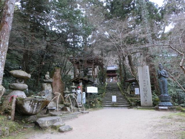 龍蔵寺・牡丹0106.JPG