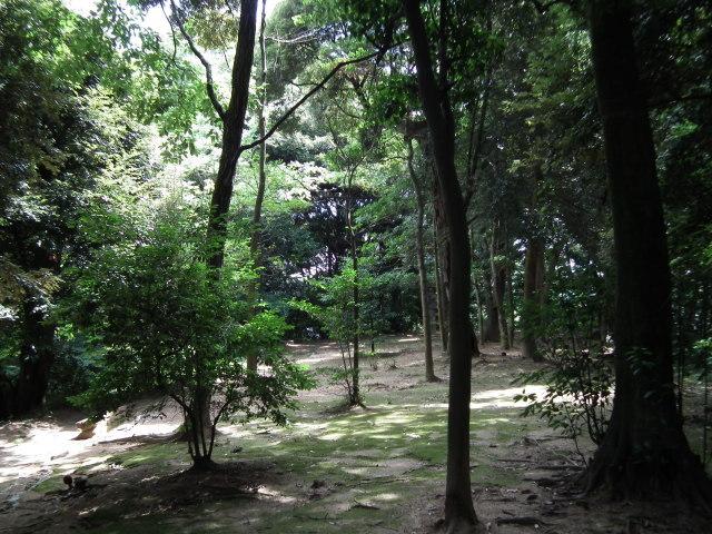 2010年8月31日長府庭園0054.JPG