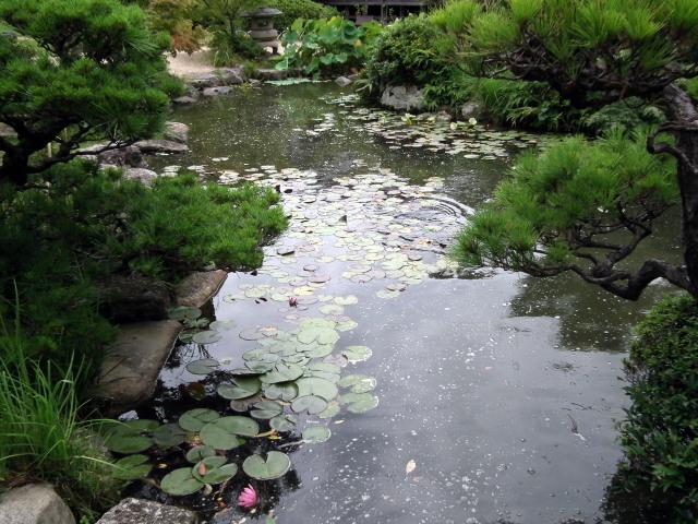 2010年8月31日長府庭園0066.JPG