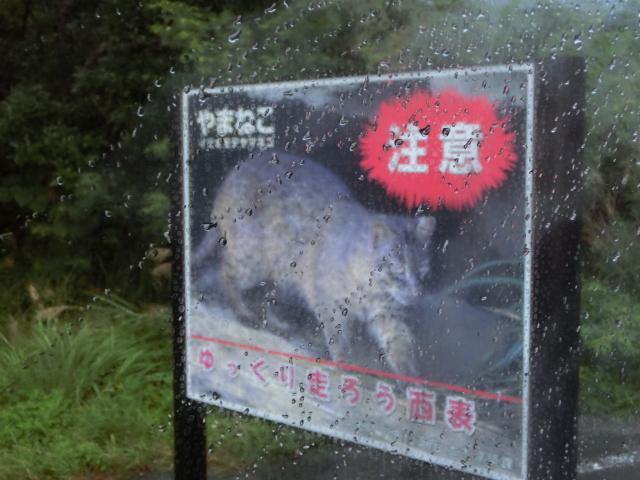 石垣島0477.JPG