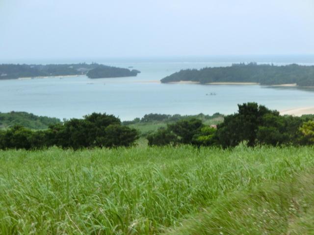 石垣島0495.JPG